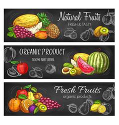 Natural fresh fruits sketch banners set vector