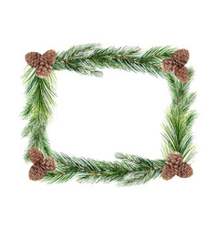 watercolor green spruce frame with cones vector image