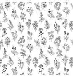 Seamless pattern of various hand drawn herbs and vector