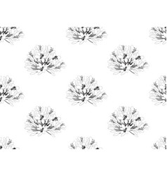Agapanthus on white background vector