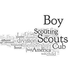 Boy scout membership divisions reviewed vector