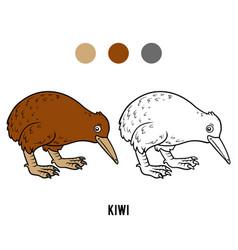 coloring book kiwi vector image