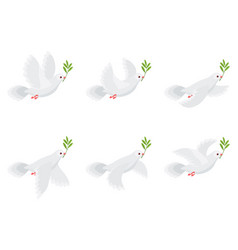 flying dove olive animation sprite sheet isolated vector image