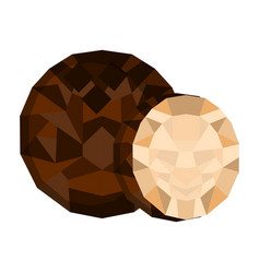 isolated geometric coconut cut low poly vector image