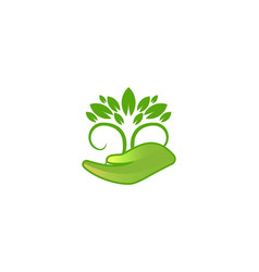 leaf tree care logo designs inspiration isolated vector image