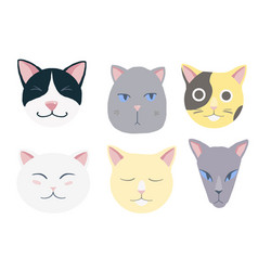 Nice cats set vector