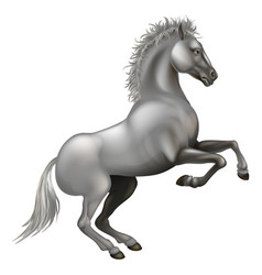 Rearing white horse vector