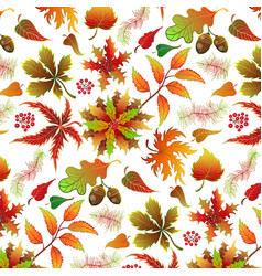 seamless light color realistic leaf pattern vector image