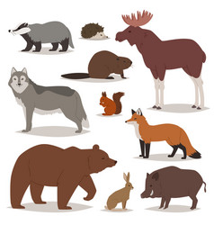 forest animals cartoon animalistic vector image