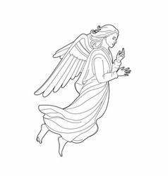 Angel vector