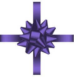 bow with ribbon 1 vector image