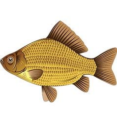Crucian cartoon vector