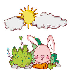 Cute animals rabbit with carrot bushes grass sun vector