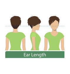 Ear length hair length vector
