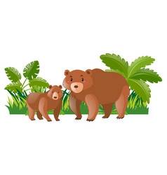 Mother bear and little cub vector