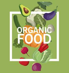 organic food harvest nutrition image vector image