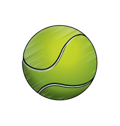 tennis ball sport game vector image