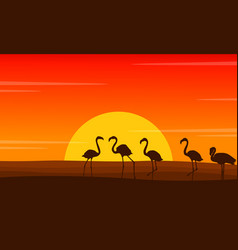 Flamingo lined scene at sunset silhouettes vector