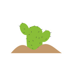 cactus plant graphic design template isolated vector image