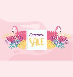 flamingos bird exotic tropical foliage banner vector image