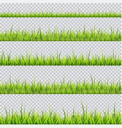 grass border collection vector image