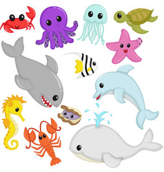 Marine wildlife animals vector