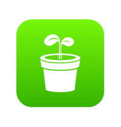 plant icon green vector image