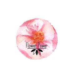 round watercolor flower vector image