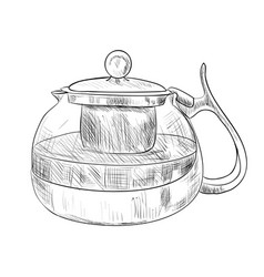 Sketch of glass teapot vector