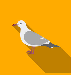 seagull icon in flate style isolated on white vector image