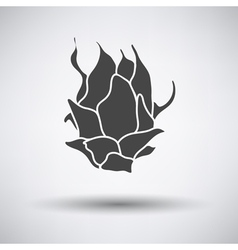 Dragon fruit icon on gray background vector image vector image