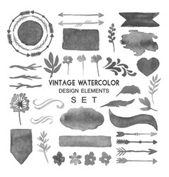vintage watercolor design elements set vector image vector image
