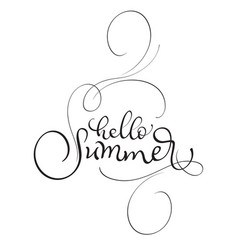 Hello summer text on white background vector