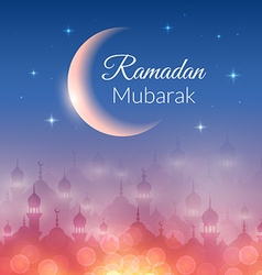 Night landscape wallpaper with mosques vector image