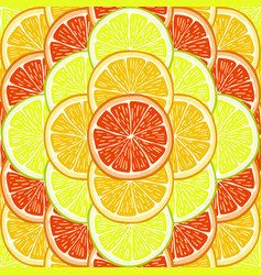 orange lemon and grapefruit slices vector image vector image