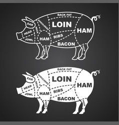 pork cuts diagram isolated on black vector image vector image