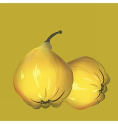 Yellow fresh Quince pattern vector image vector image