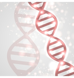 Abstract DNA vector