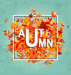 Autumn foliage banner for your design vector