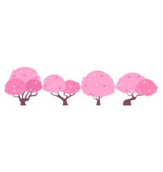 Blossom sakura tree vector