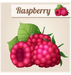 Detailed Icon Raspberry vector image