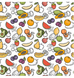 doodle fruits seamless pattern hand drawn exotic vector image