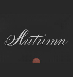 hand drawn lettering autumn elegant vector image