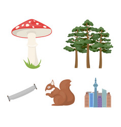 Pine poisonous mushroom tree squirrel saw vector