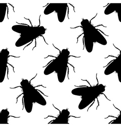 Seamless pattern with fly Musca domestica hand vector image