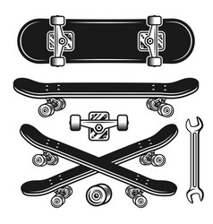 skateboard parts set objects or elements vector image