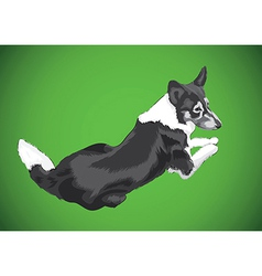 lying big dog vector image