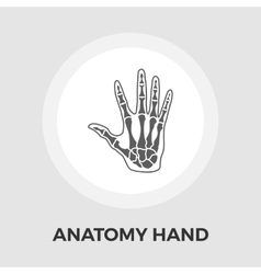 Anatomy hand Flat Icon vector image vector image
