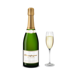 glass of champagne and bottle vector image