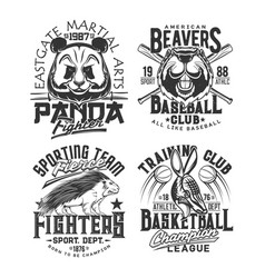 Baseball basketball team t shirt print sport club vector